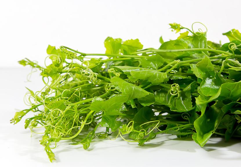 Herb 4