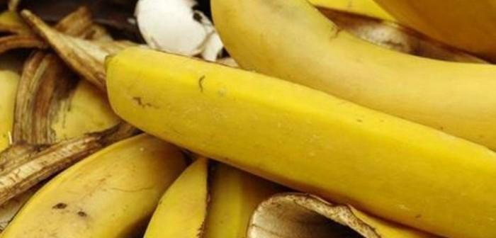 banana1500