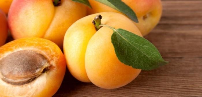 Apricot-600x399