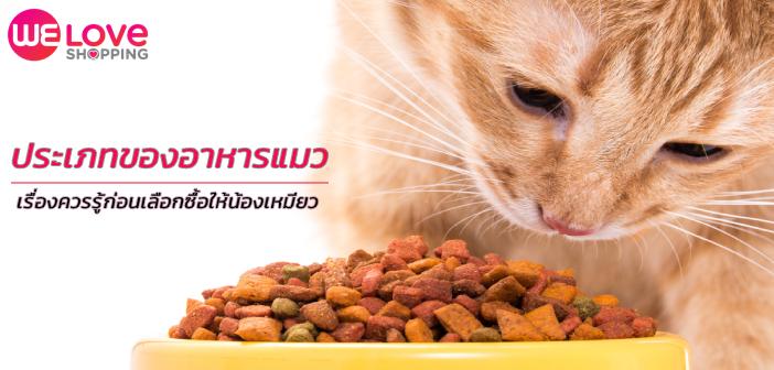 อาหารแมว-cat-food